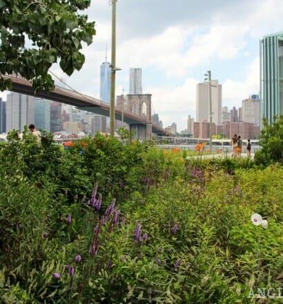 Errores viajar Nueva York Brooklyn Bridge Park-1