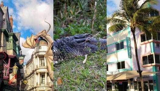 Guía para viajar por Florida – Ruta y consejos