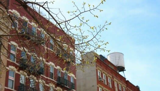 10 cosas que las guías de Nueva York no te cuentan