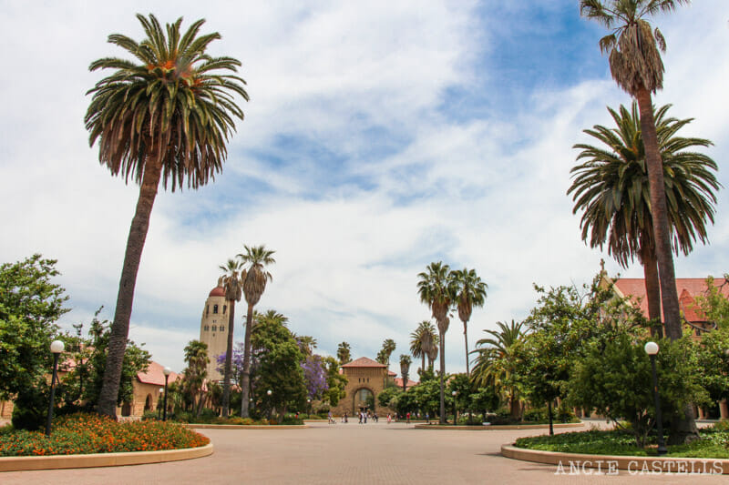 Guia Silicon Valley California Visitar Stanford