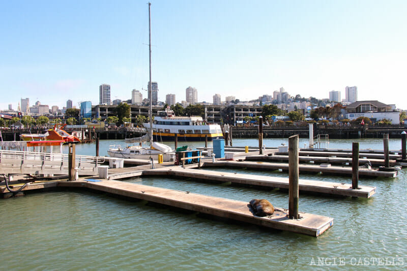 Que ver San Francisco Itinerarios Fishermans Wharf