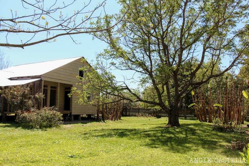 Las mejores plantaciones de Louisiana Laura-1