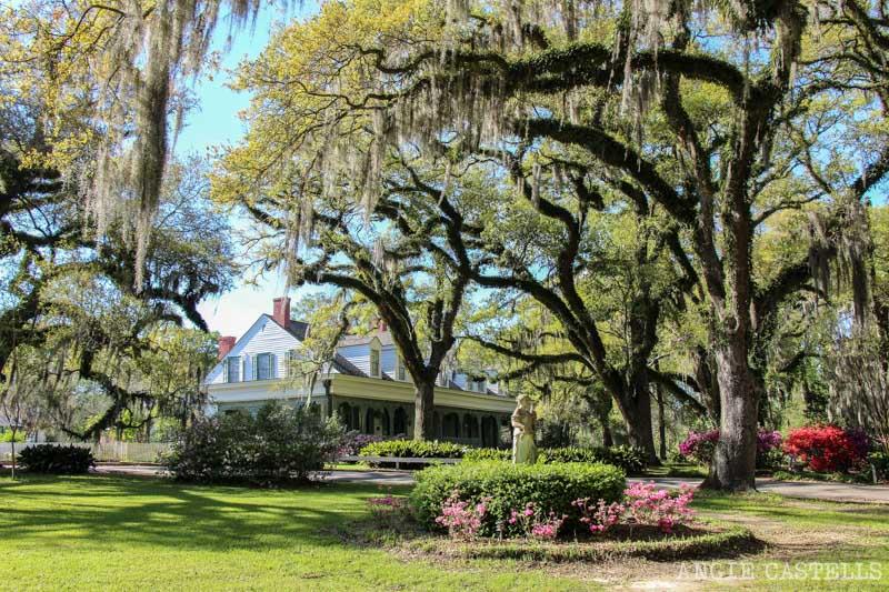 Las mejores plantaciones de Louisiana The Myrtles 4