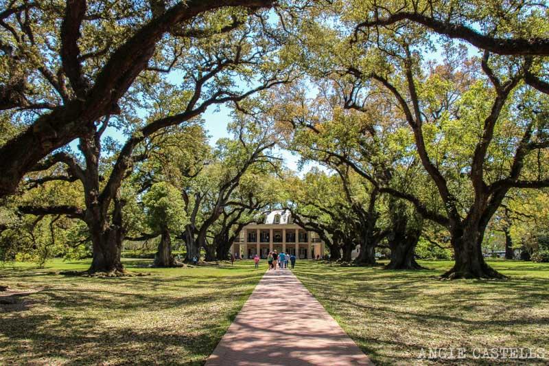 Mejores plantaciones de Louisiana Nueva Orleans Oak Alley-3