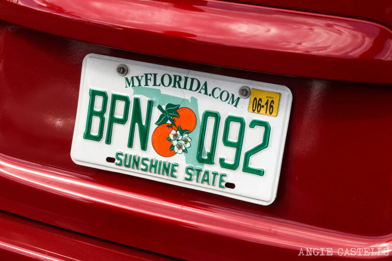 Viajar Florida Orlando Miami Everglades-3
