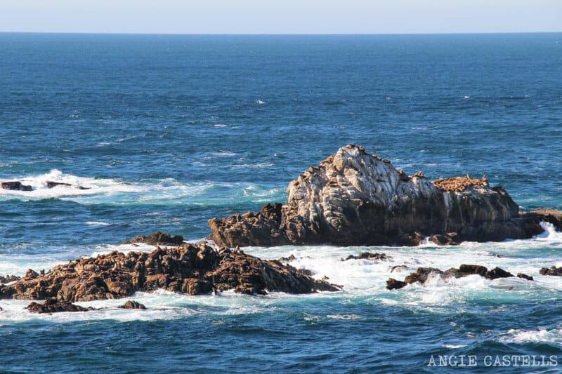 Recorrer carretera Big Sur Pacific Coast Highway California Point Lobos
