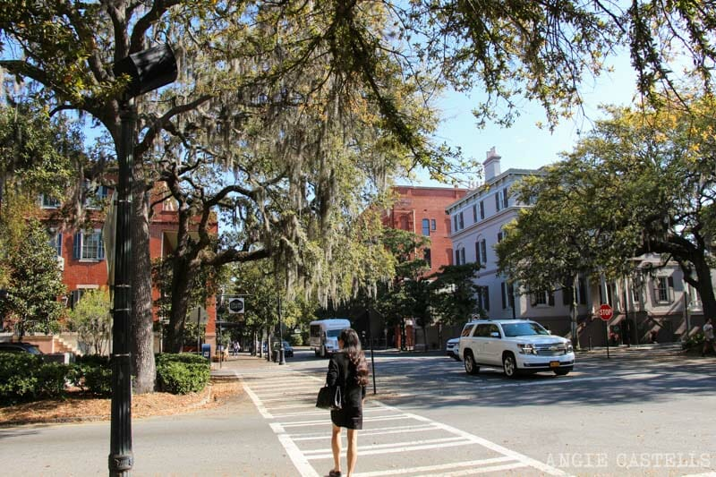 Guia de Savannah que ver y hacer