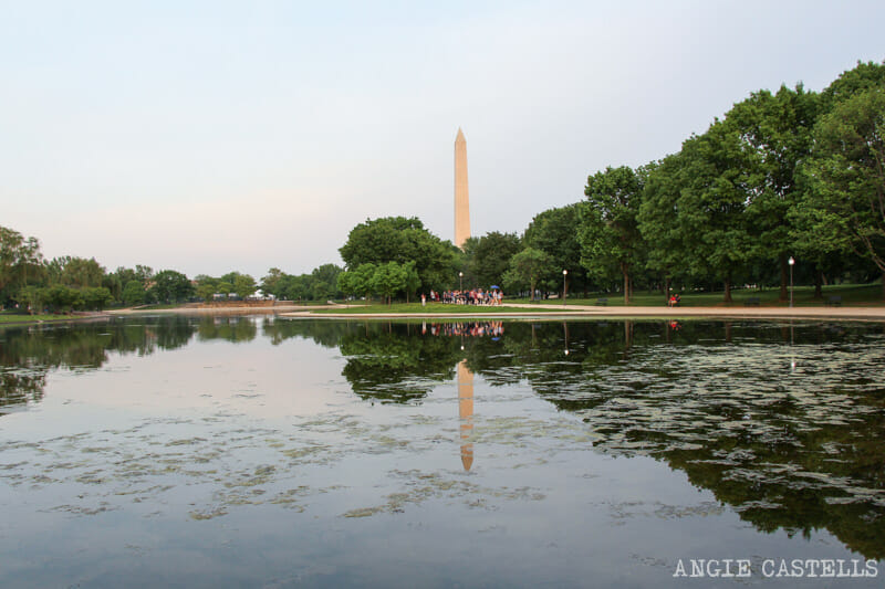 Guia Washington DC Que ver Excursion desde Nueva York Monumento a Washington
