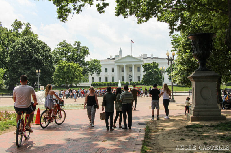 Guia Washington DC Que ver Excursion desde Nueva York White House